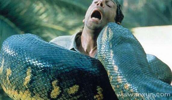 梦见大蛇吃人