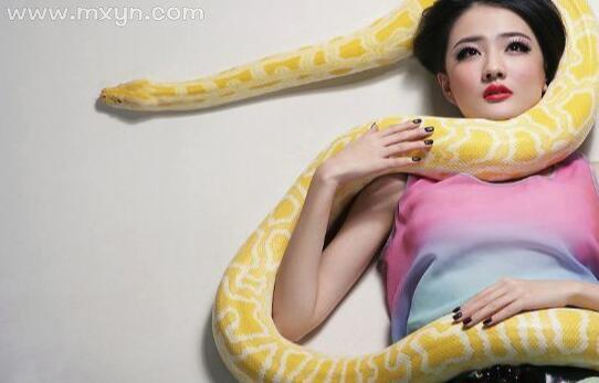 梦见大蛇缠身