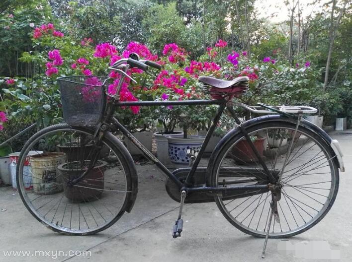 梦见自行车轮胎没气