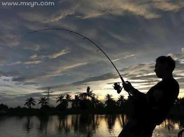 梦见钓到很多鱼