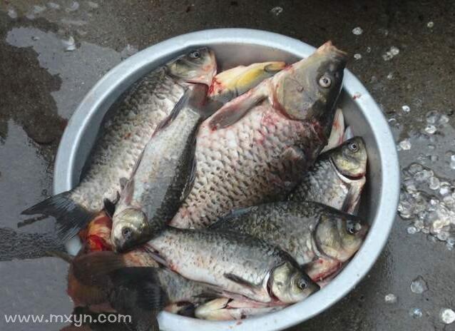 梦见自己杀鱼