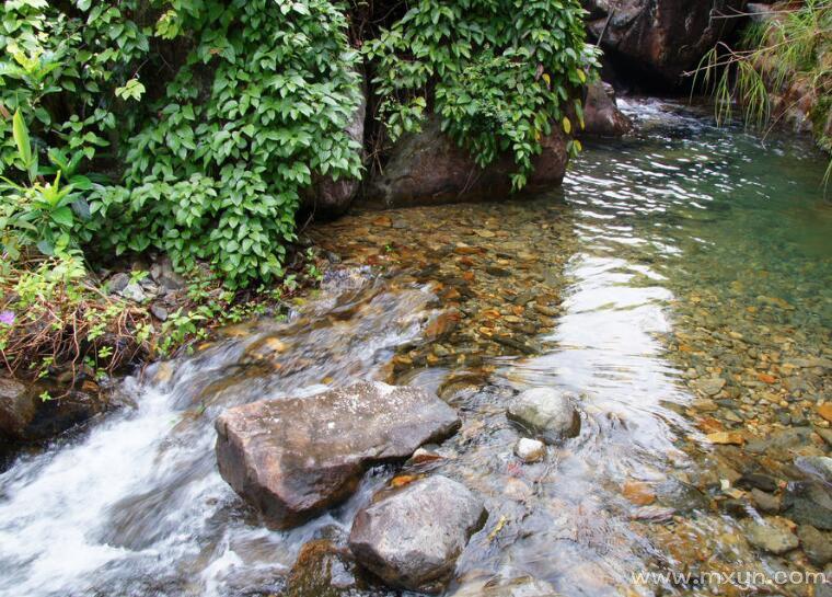 女人梦见清澈流动的水