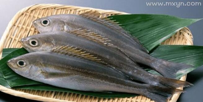 怀孕梦见鱼