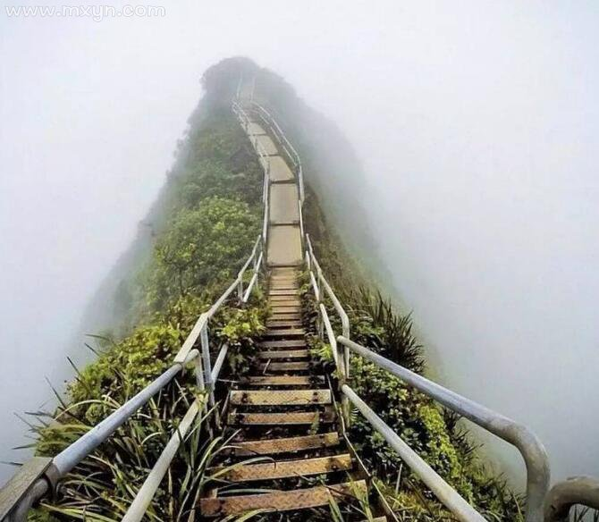梦见上楼梯