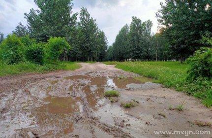 已婚女人梦见走泥路