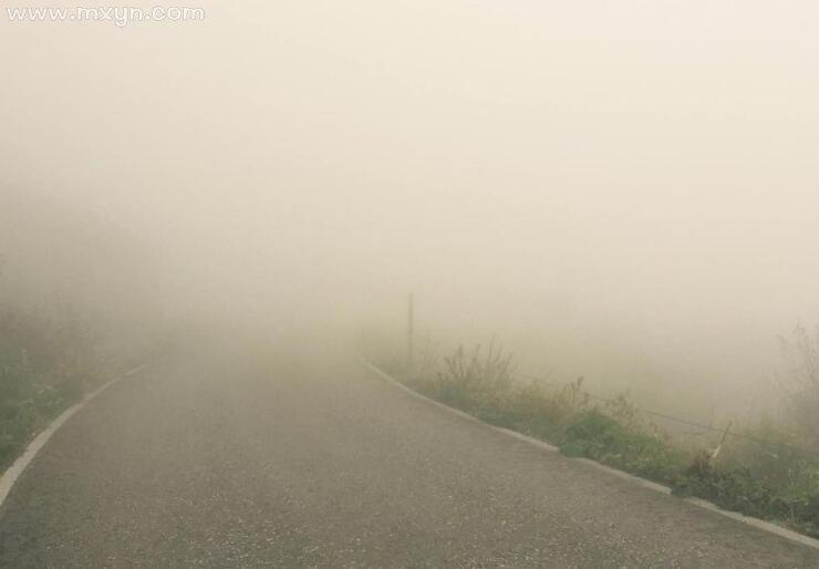 梦见大雾看不清路