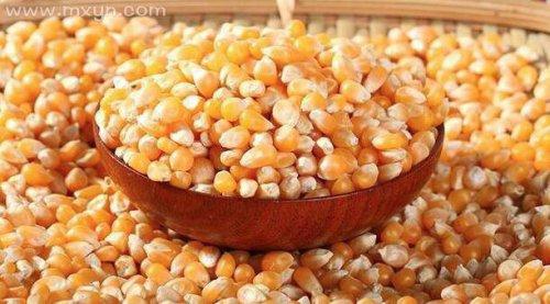 梦见很大一堆玉米粒