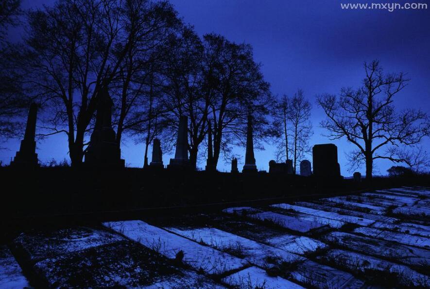 梦见去墓地