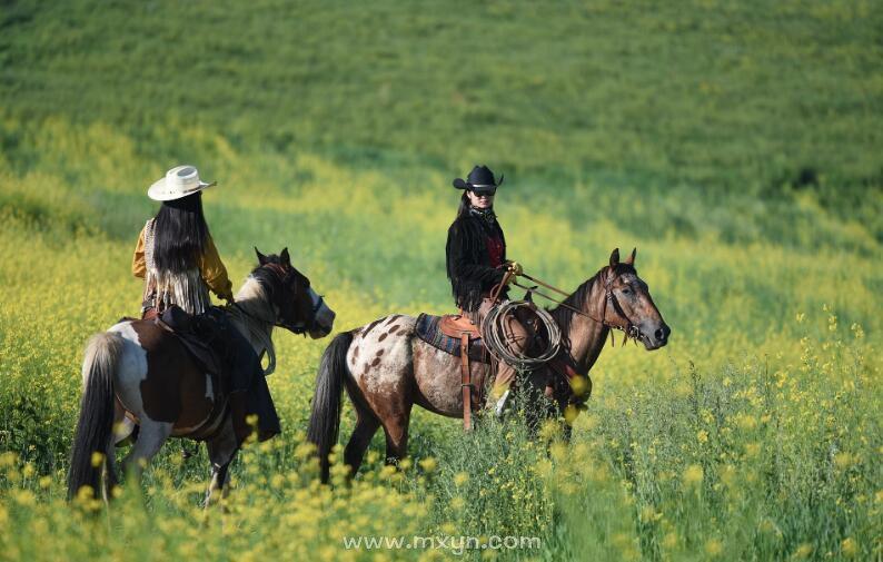 梦见我自己骑马